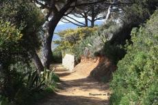 passeggiata verso la spiaggia degli Stecchi