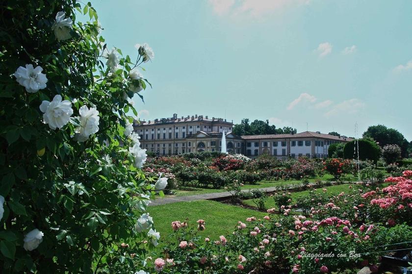 Villa Reale vista dal roseto