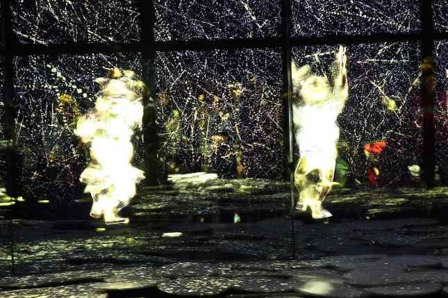 Giappone - prima sala immersi virtualmente nella natura giapponese