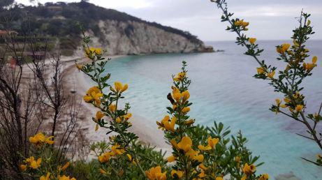 Le meravigliose spiagge